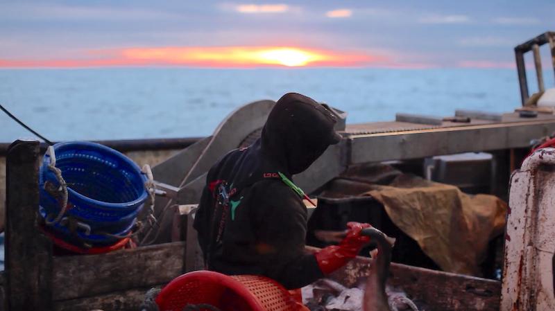 Docufilm stars local fishermen, chefs